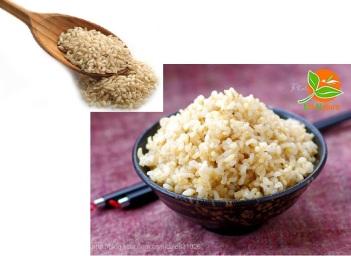 古方酵素发酵、煮糙米饭